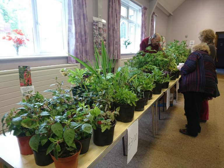 DDHS | Darley Dale Horticultural Society